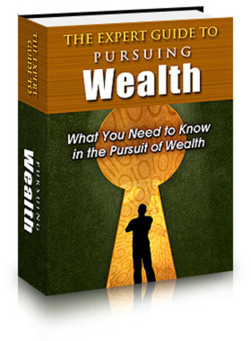 Product picture The Expert Guide to Pursuing Wealth